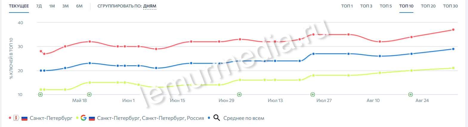 График % запросов в ТОП10 за 6 месяцев продвижения